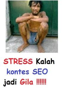 kontes seo terbaru stress